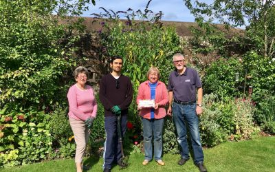 Our garden won gold this year for the Petersfield in Bloom competition