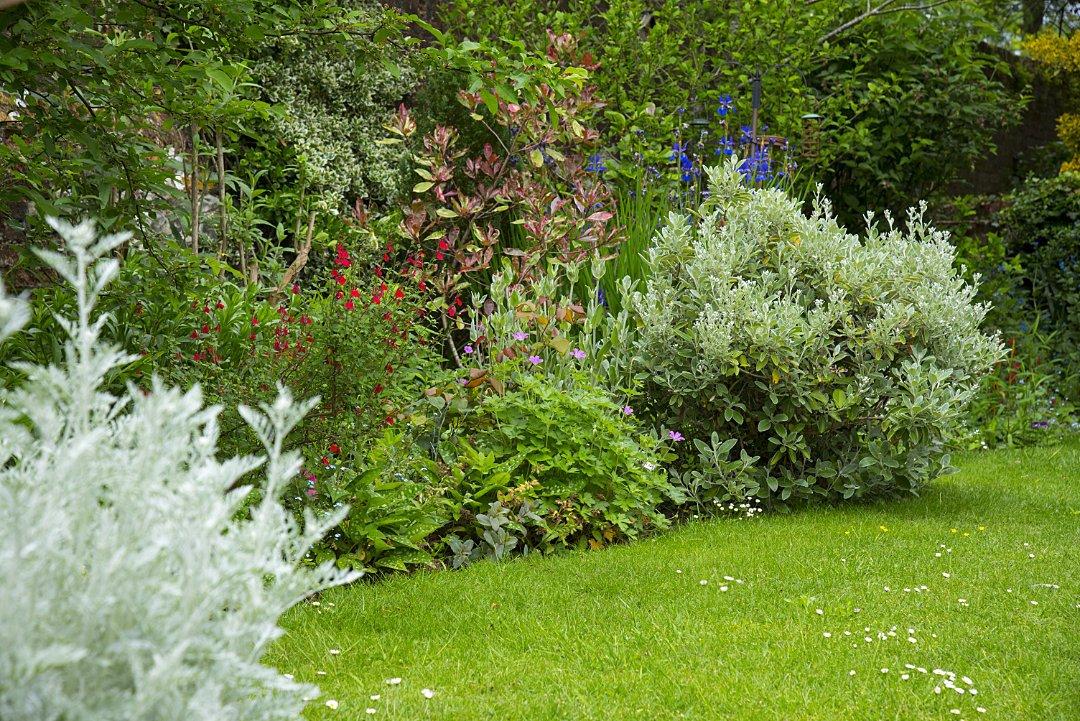Winton House Centre Garden